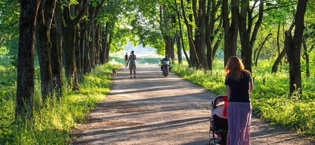 a great baby stroller