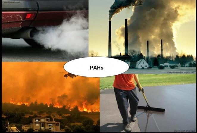 PAH Sources