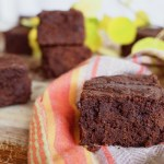 fudgy tahini pumpkin paleo brownies