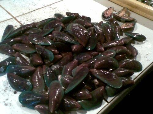Tahong (Mussels)
