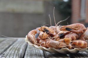 foodtruck met vis garnaal