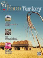 foodturkey-nisan15