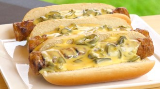 Chili-Cheese-Hotdog