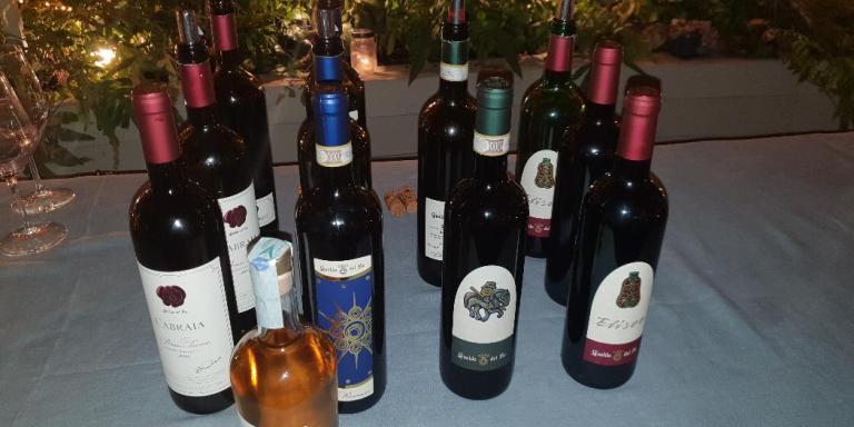 WINE/ NASCE LA COMUNITA' DEL CHIANTI CLASSICO DA UN'IDEA DEL CONSORZIO