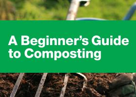 Thumbnail composting