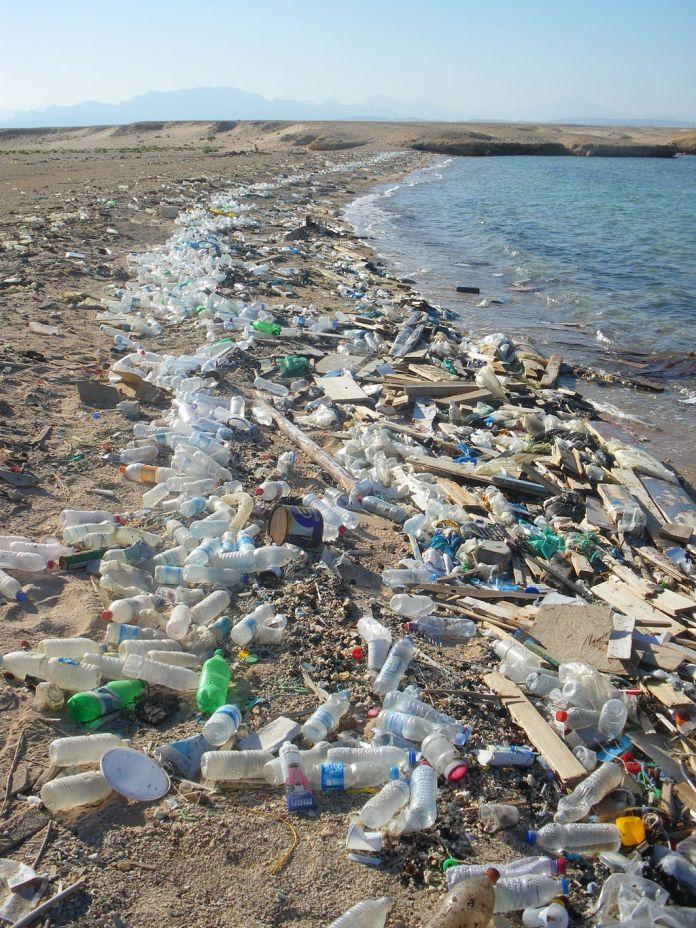Pollution des plages par le plastique...