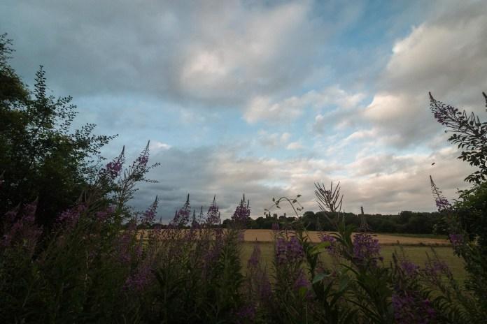 Des fleurs en premier plan et des nuages, un grand classique encore une fois.