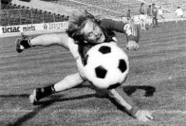 Ronnie Hellström svezia 1974