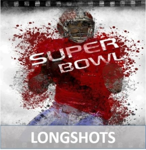 Long Shots to win the super bowl 2016