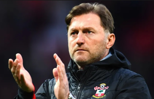 Southampton V Newcastle Prediction 6/11/20
