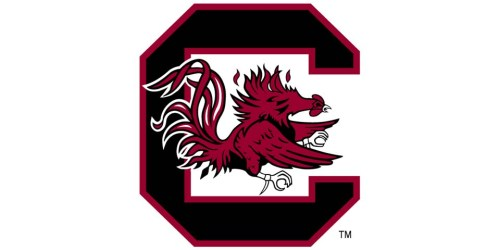 South Carolina Gamecocks 3-3 Stack Defense (2000) - Charlie Strong