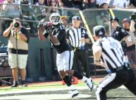 Tom Hill and Shawn Hochuli (Oakland Raiders)