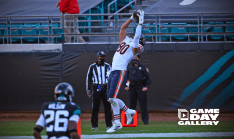 Dale Shaw (Chicago Bears)