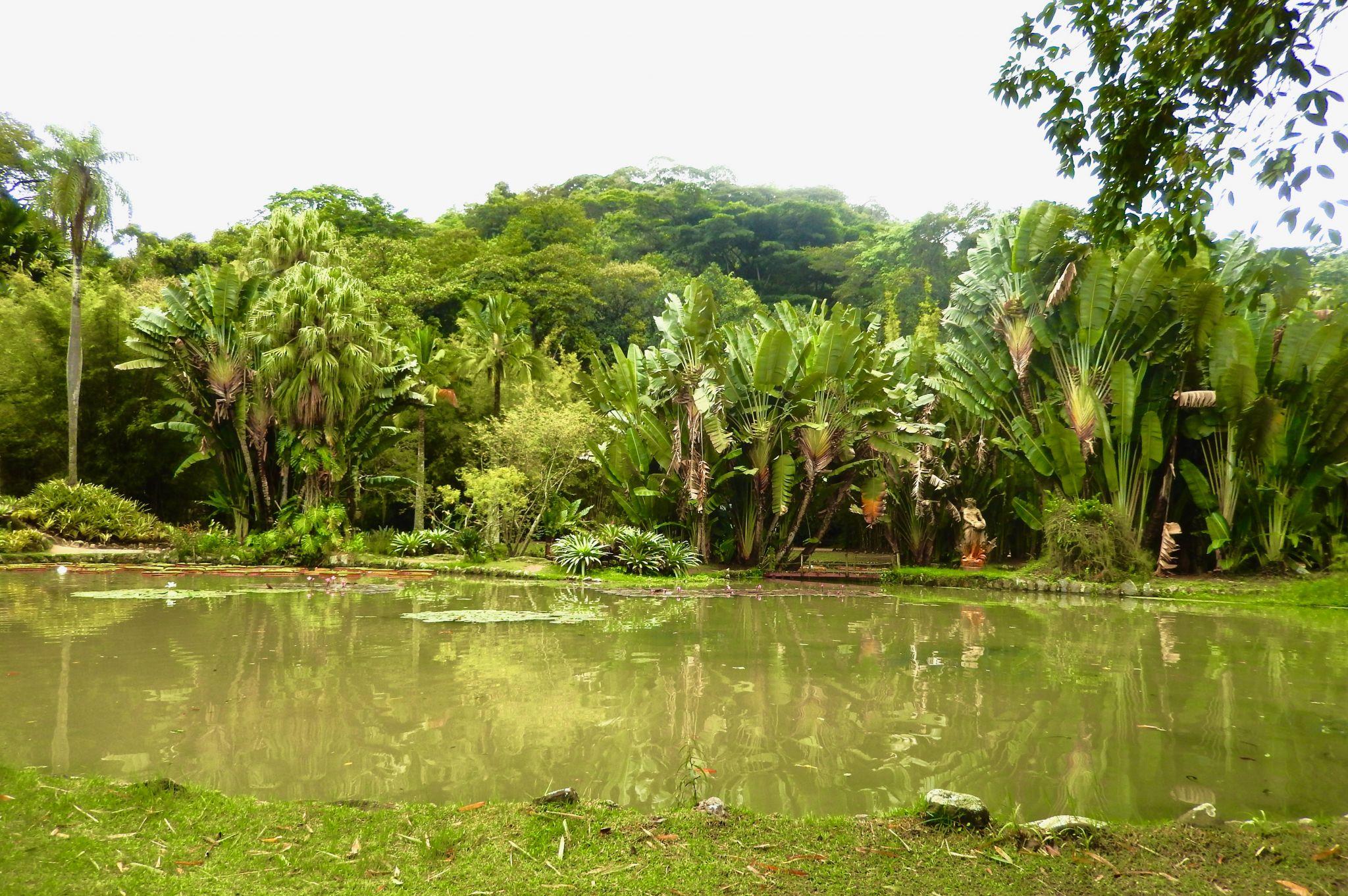Jardim botânico in Rio de Janeiro