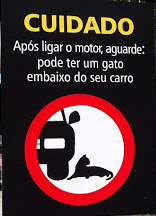 A Lazy Sunday in Rio de Janeiro Jockey Club - Footloose Lemonjuice