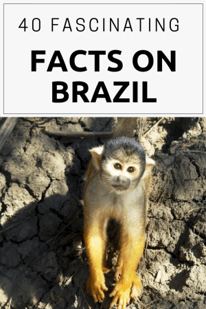 40 Fascinating Facts on Brazil