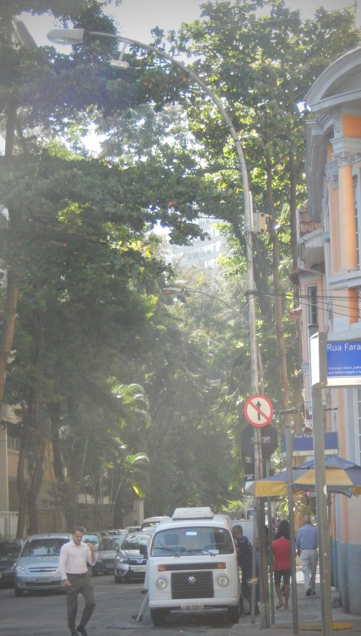 Hippy Van - 40 Facts on Brazil