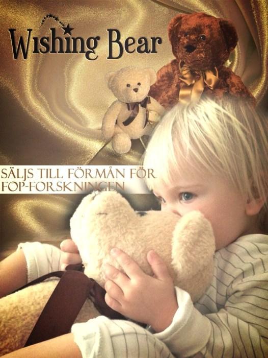 Wishing Bear