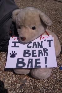 Bear BAE