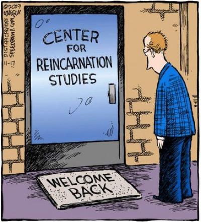 reincarnation8
