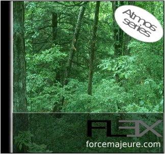 Flex_Series1: Forest Stream