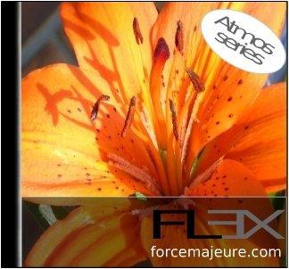 Flex_Series1: Gentle Wind