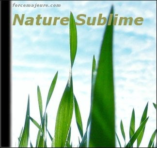 Nature Sublime
