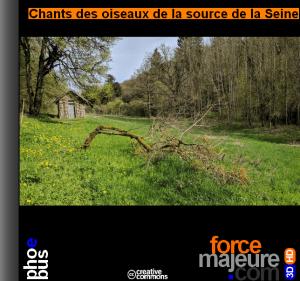 Chants des oiseaux de la source de la Seine forcemajeure