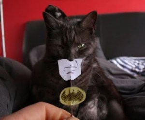 I AM BATMAN…Now Pass Me That Can of Tuna Slowly