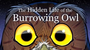 ANIMATION GEEK: The Hidden Life of the Burrowing Owl by Mike Roush
