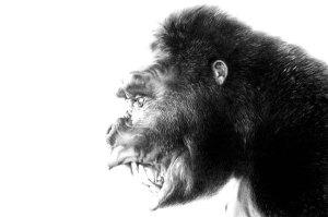 FOG! Chats With Author/Artist Joe DeVito About His 'King Kong of Skull Island' Kickstarter