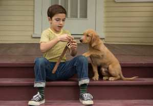 Win 'A Dog's Purpose' on Blu-ray Combo Pack!