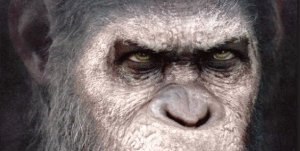 Win 'War for the Planet of the Apes: Revelations' From Titan Books!