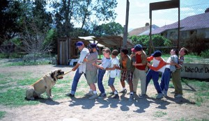 Fox Celebrates 'The Sandlot' 25th Anniversary with Collector's Capsule