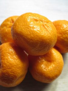 mandarini del giardino