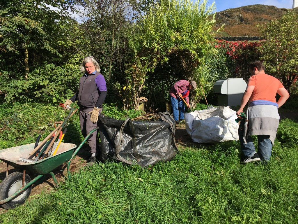 Volunteers working hard to clear brambles