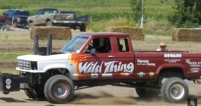 wild thing ranger