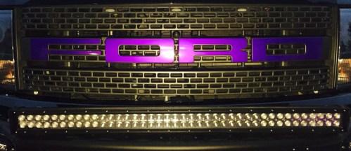 2014 Ford F-150 Raptor purple Grill