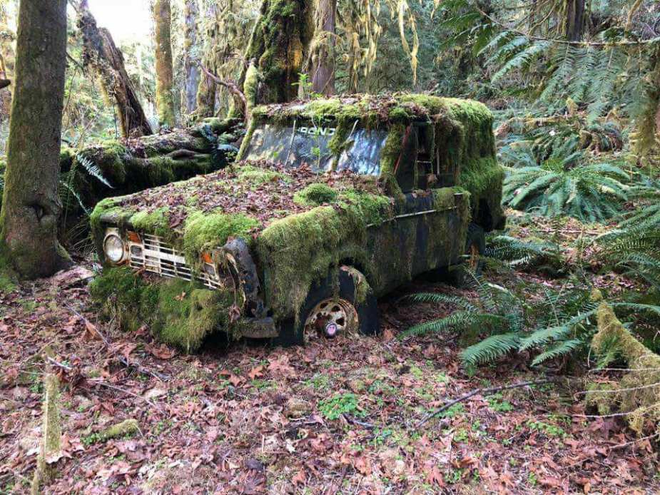 Abandoned Ford Bronco