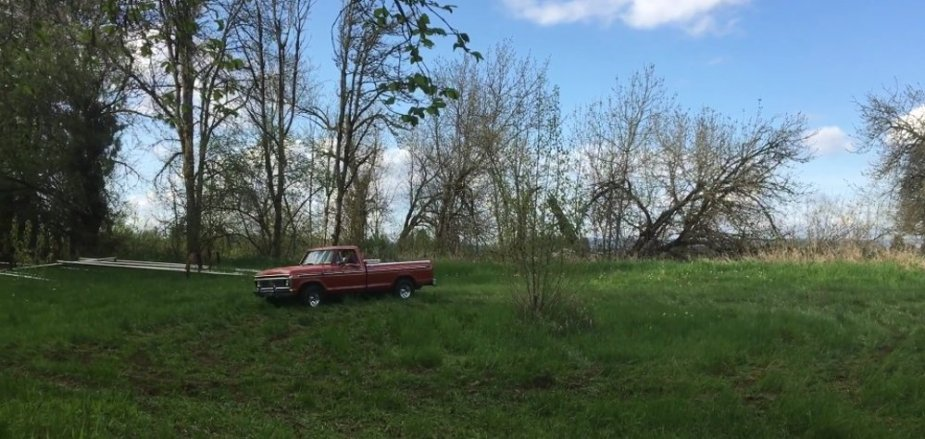 1977 F-150 Far off in the grass