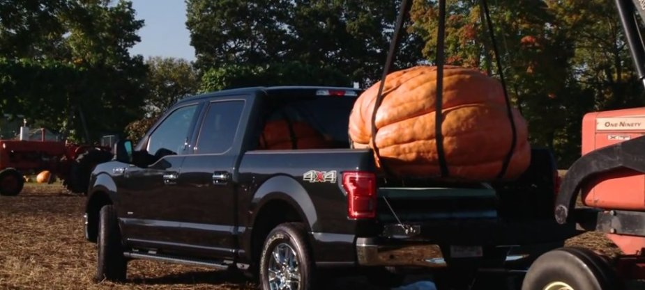 F-150 Taking a Pumpkin