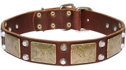 Gorgeous War Dog Leather Dog Collar - C85 (old brass massive plates +2 nickel pyramids)
