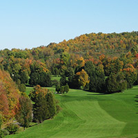 Golf Course Tree Management Services
