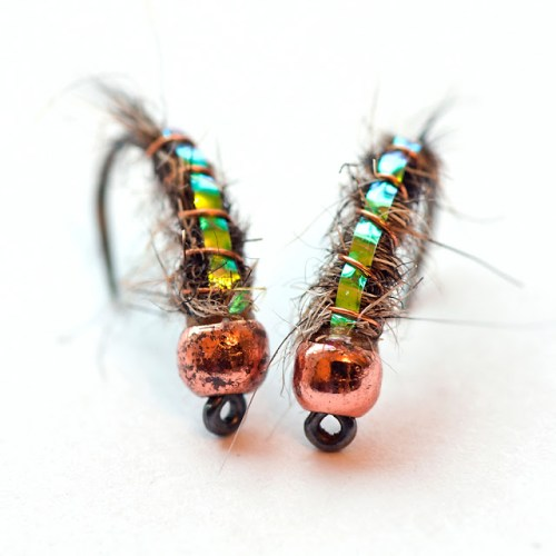 Copper_Bead_Nymphs
