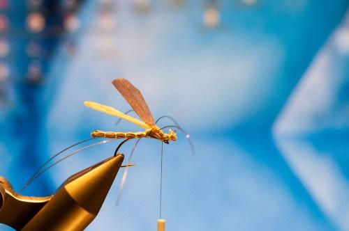 Forelle Äsche Fliegenbinden Schnake Crane Fly Daddy Long Legs19