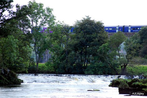 River Eden © flickr: Englishpointers