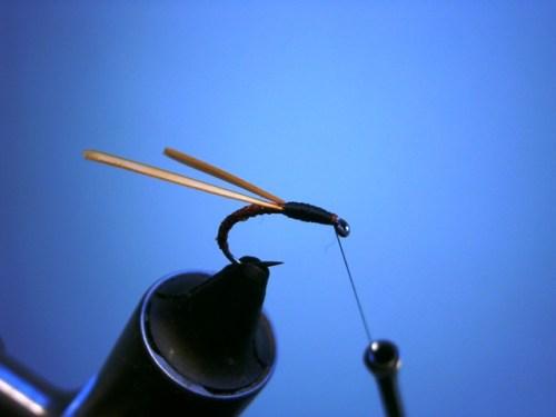 Fliegenbinden Buzzers Epoxy4