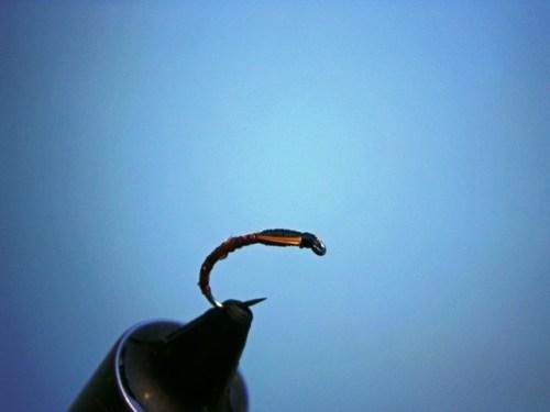 Fliegenbinden Buzzers Epoxy5