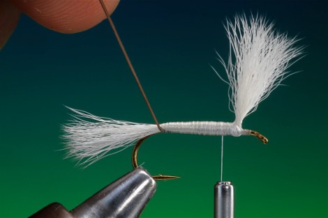 H&L Dry Fly 16