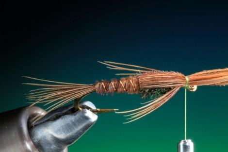 BOC PTN Pheasant Tail 18
